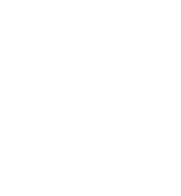 NAA logo - white